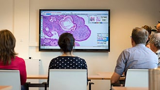 digital pathology clinical image